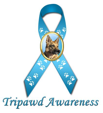 tripawd-ribbon